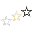 Star Burst Earring(stud)